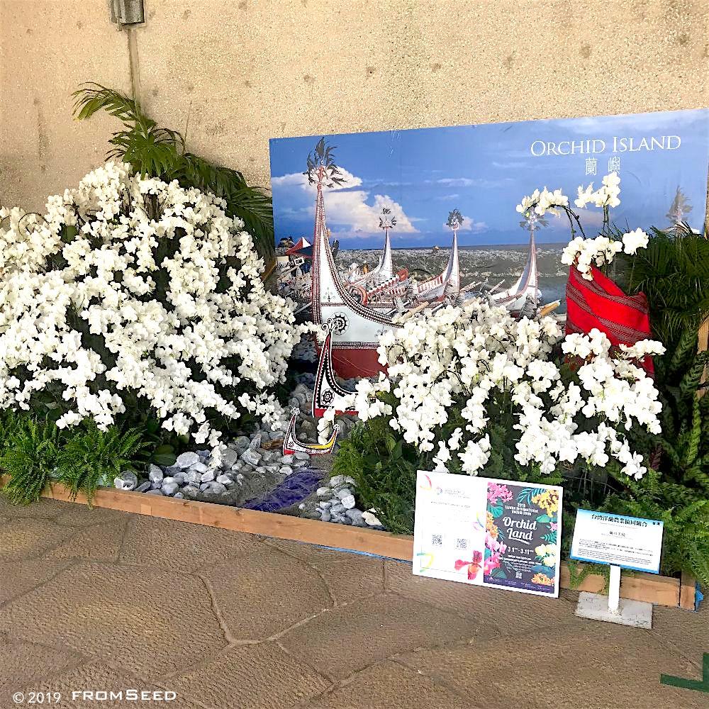 沖縄国際洋蘭博覧会 ディスプレイ審査の部 OIOS2019 台湾